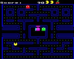Snapper BBC Micro